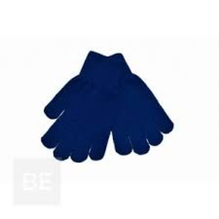 Royal Blue Winter Gloves